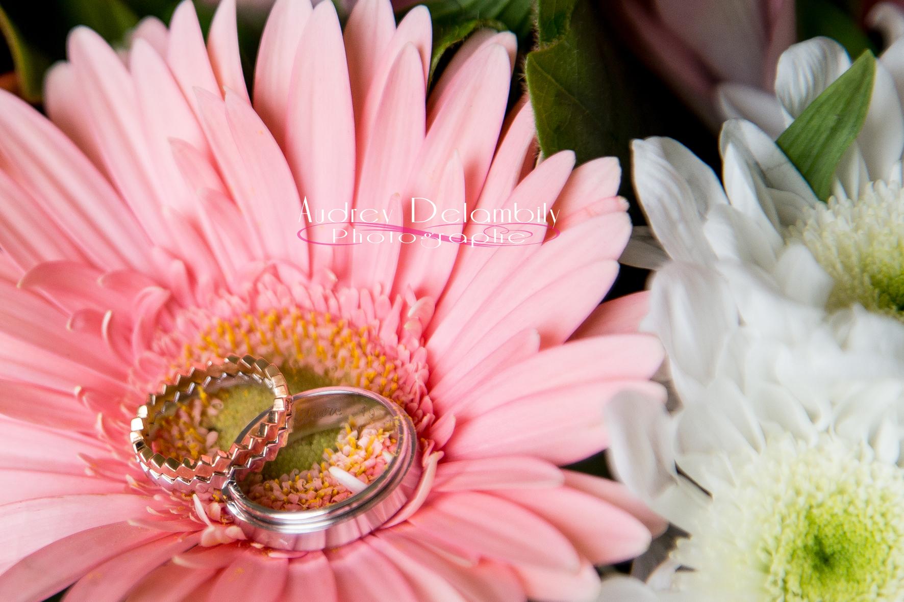 photographe-mariage-var-toulon-domaine-de-montrieux-004
