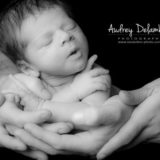 newborn-photographe-var-toulon-seance-photo-audrey-delambily